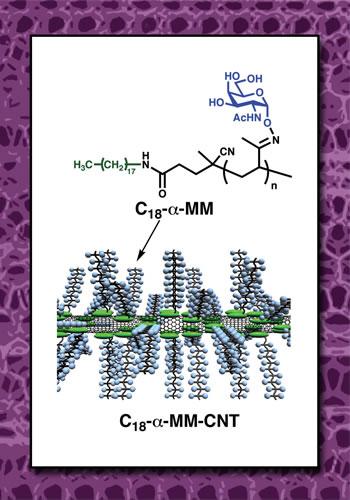mucin-mimic polymer