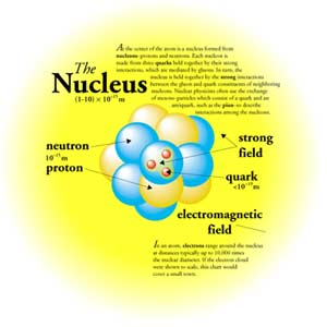 the nucleus, Human Body