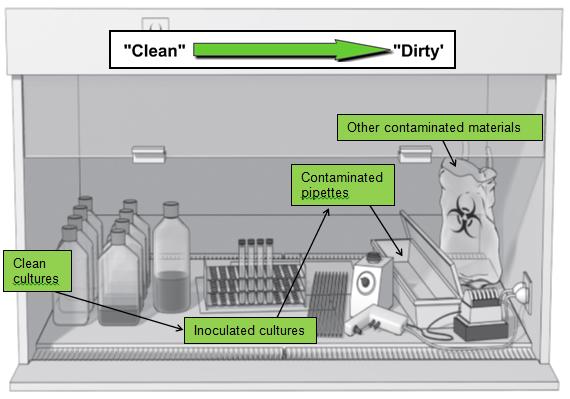 Pub-3000: CH26 Biosafety
