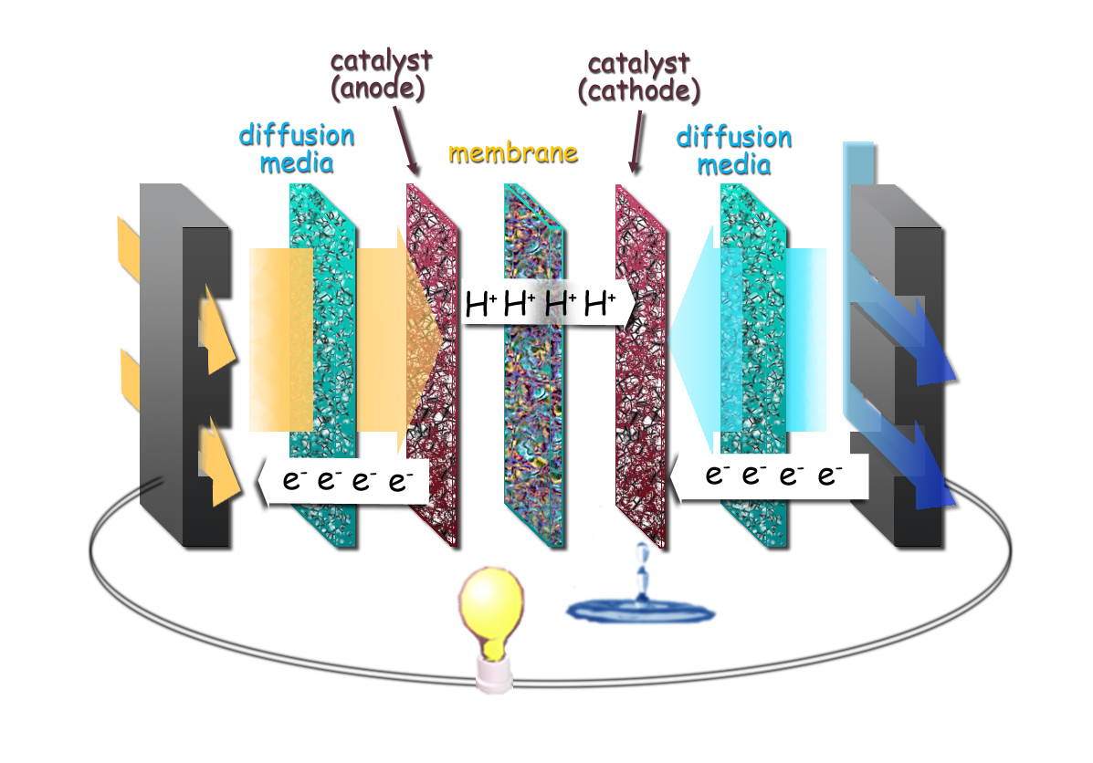 Modeling to Build a Better Fuel Cell | Berkeley Lab