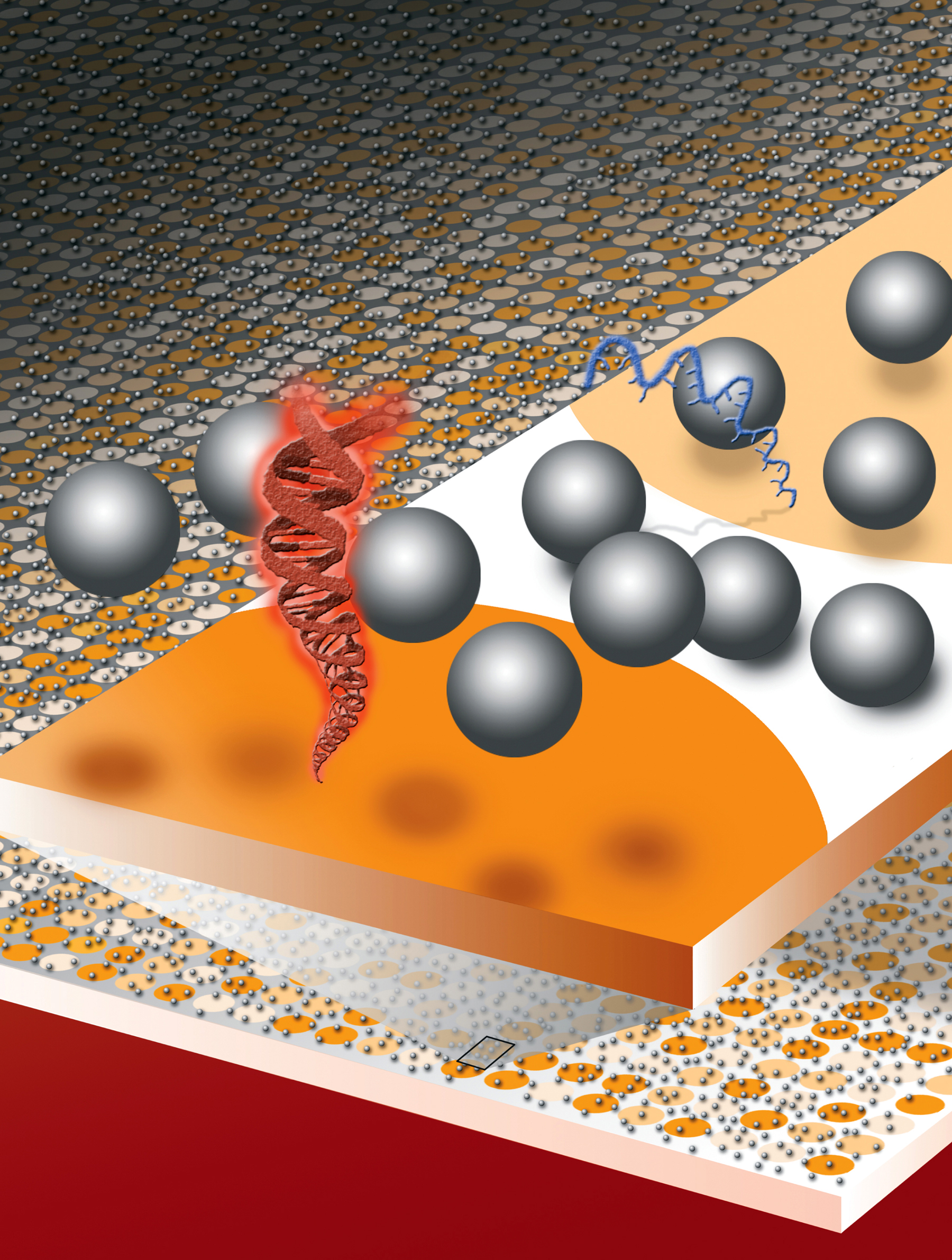 Microspheres levitate from electrostatic repulsion